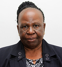 Hon. Lady Justice Lombe P. Chibesakunda